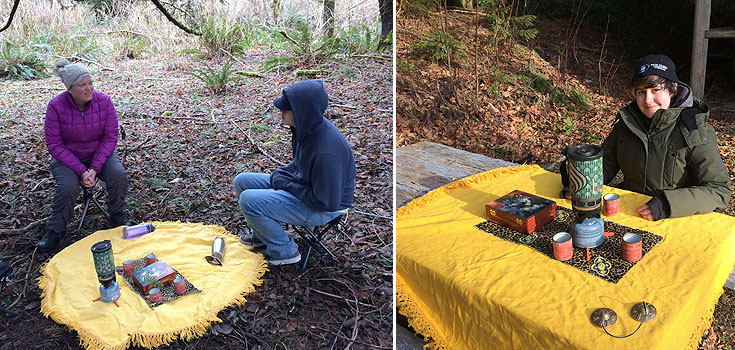 Forest Therapy Walks with Tea Ceremony