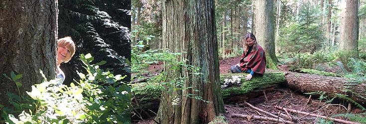 Nature-with-Haida_Sunshine-Coast-BC-Retreat